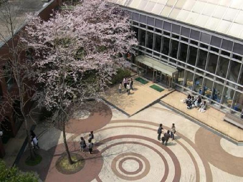 ひょうご森と木の文化フォーラム